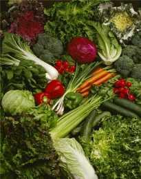 抗藍光!只吃葉黃素不夠!營養師建議黃綠紅更好