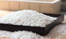 現在的狗為什麼越來越多不吃米飯了,吃米飯真的對狗有危害嗎?
