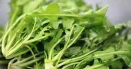 秋天養腎好時節,推薦3種食物,益氣補腎,排毒抗衰,增強抵抗力
