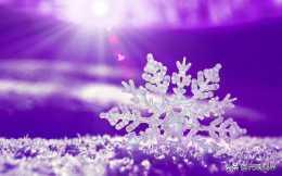 難以置信的美麗!20張雪花特寫照片